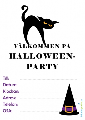 Halloweenparty - katt